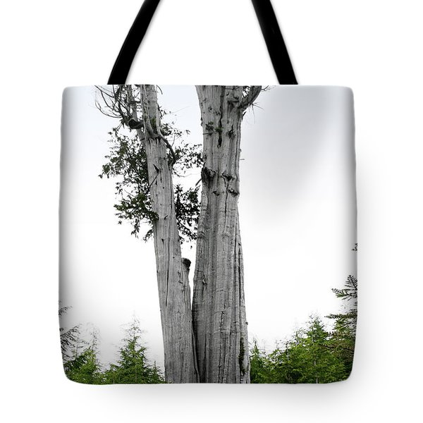 Life At The Top - Duncan Cedar Olympic National Park Wa Tote Bag by Christine Till