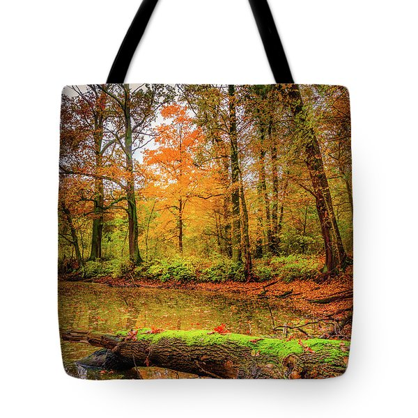 Tote Bag featuring the photograph Life Cycle by Dmytro Korol