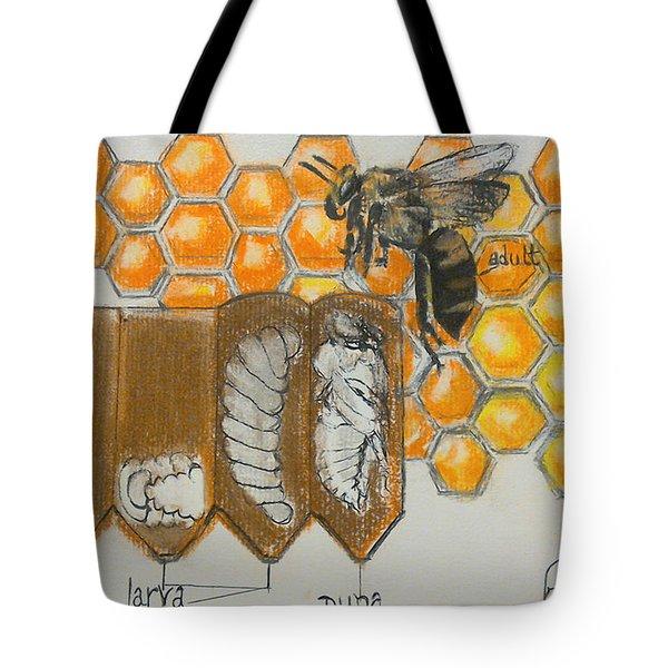Life Cycle Of A Bee  Tote Bag by Francine Heykoop