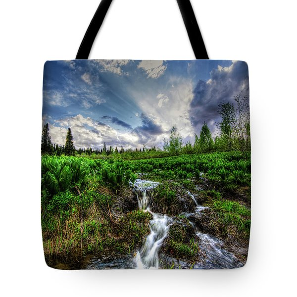 Tote Bag featuring the photograph Life Giving Stream by Bryan Carter