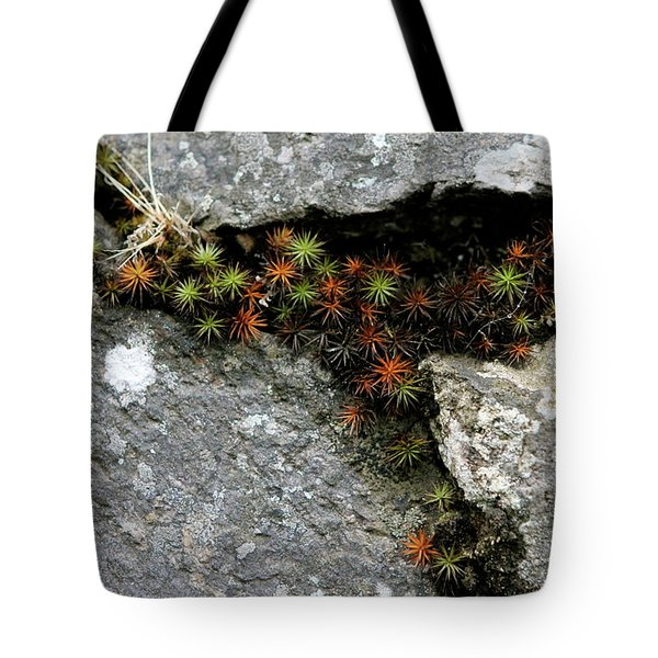 Life Lived In The Cracks Tote Bag