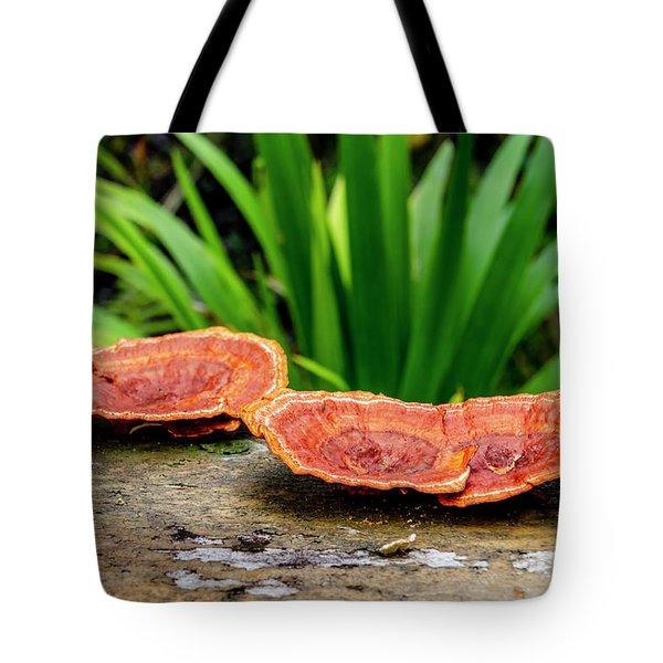 Life On A Log Tote Bag