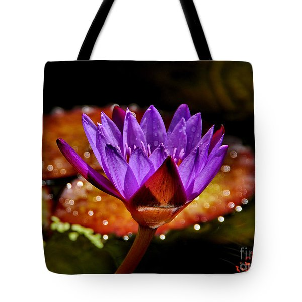 Life On The Pond 2 Tote Bag by Andrea Kollo