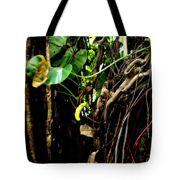 Tote Bag featuring the photograph Life by Rushan Ruzaick