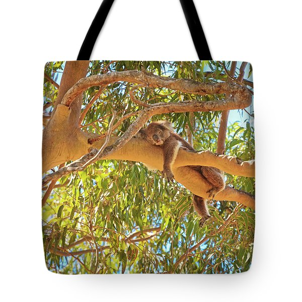 Tote Bag featuring the photograph Life's Hard, Yanchep National Park by Dave Catley
