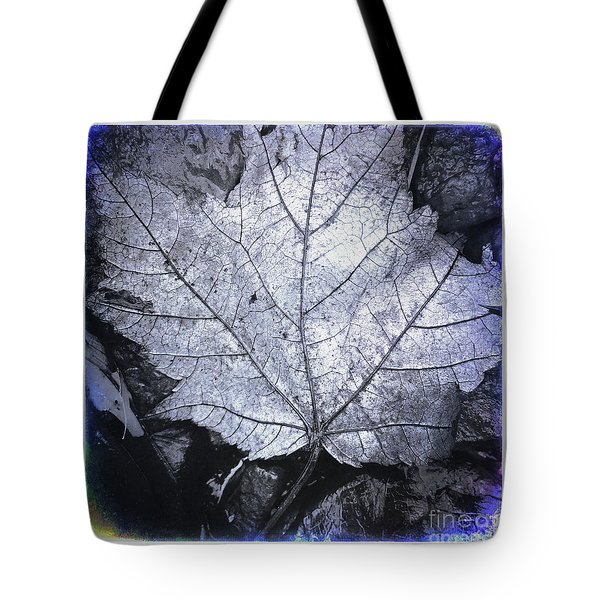 Light After Dark Tote Bag