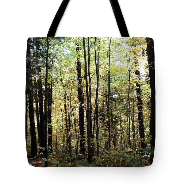 Tote Bag featuring the photograph Light Among The Trees by Felipe Adan Lerma