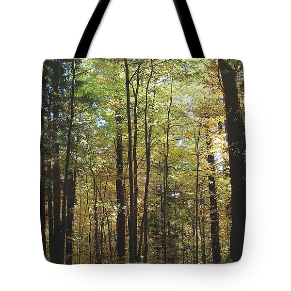 Tote Bag featuring the photograph Light Among The Trees Vertical by Felipe Adan Lerma