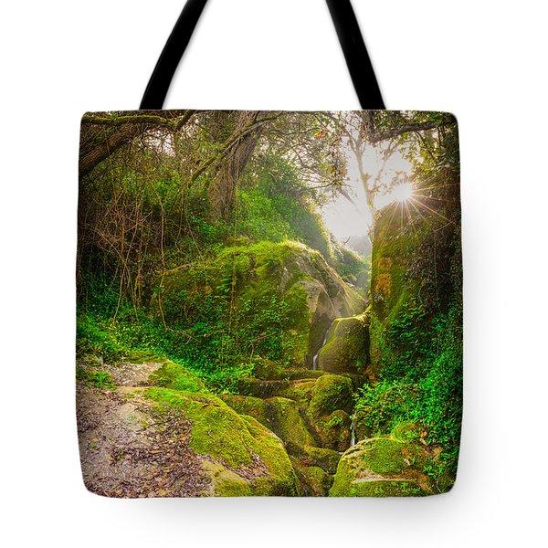 Light And Magic II Tote Bag