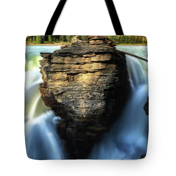 Tote Bag featuring the photograph Light And Movement by Rick Furmanek