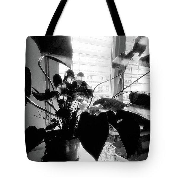 Light And Shadow 11 Tote Bag