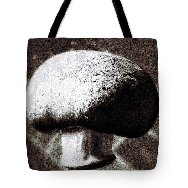 Light And Shadow 9 Tote Bag