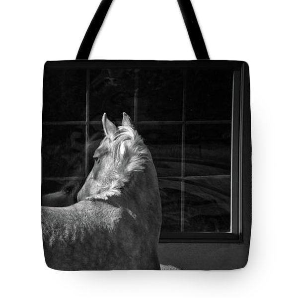 Tote Bag featuring the photograph Light And Shadow by Catherine Sobredo