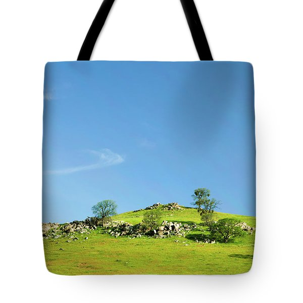 Tote Bag featuring the photograph Light And Shadows - Spring In Central California by Ram Vasudev