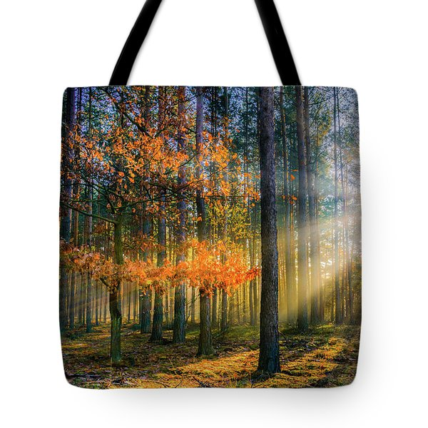 Light Catcher Tote Bag by Dmytro Korol