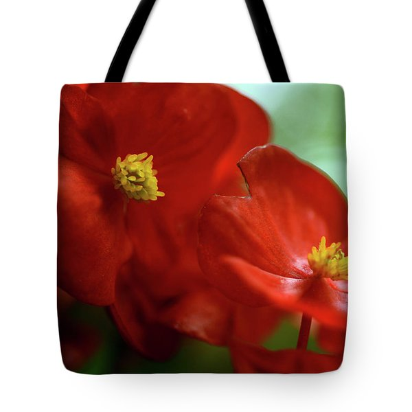 Light Catcher Tote Bag by Wanda Brandon
