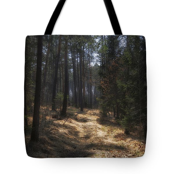 Light In The Wood Tote Bag