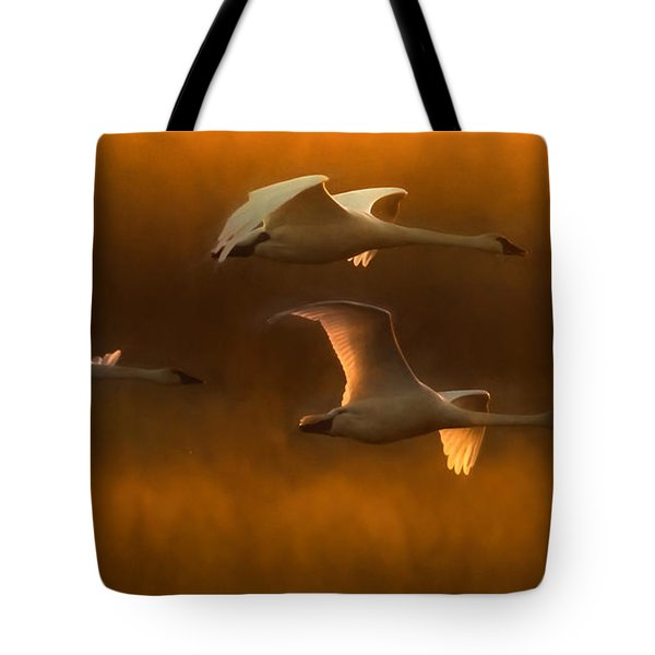 Light Tote Bag by Kelly Marquardt