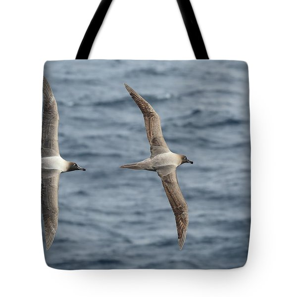 Light-mantled Albatross Duo Tote Bag