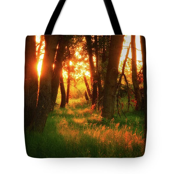 Tote Bag featuring the photograph Light Of The Forest II by John De Bord