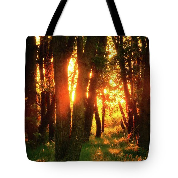 Tote Bag featuring the photograph Light Of The Forest by John De Bord
