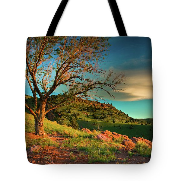 Tote Bag featuring the photograph Light Of The Hillside by John De Bord