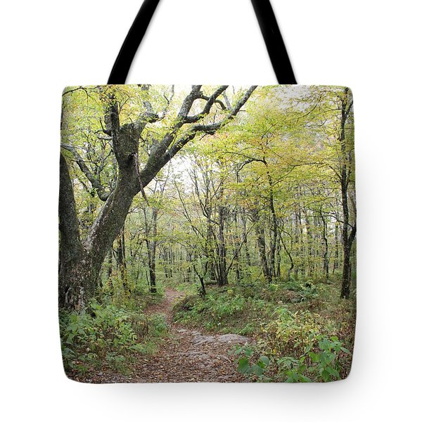 Light On Path Tote Bag