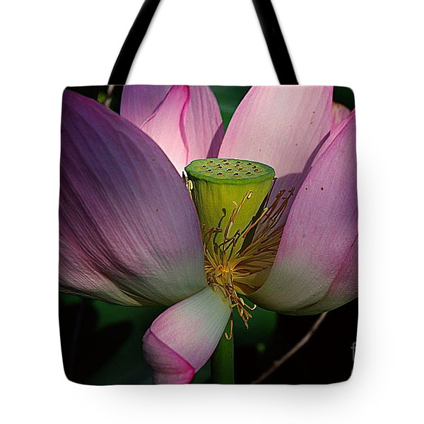 Light On The Lotus Tote Bag by John S