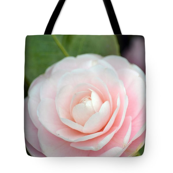 Light Pink Camellia Flower Tote Bag
