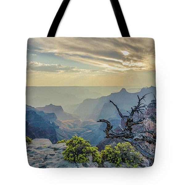 Light Seeks The Depths Of Grand Canyon Tote Bag