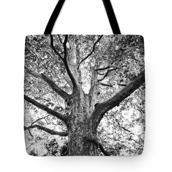 Light, Shadows And Texture Tote Bag by Karen Stahlros