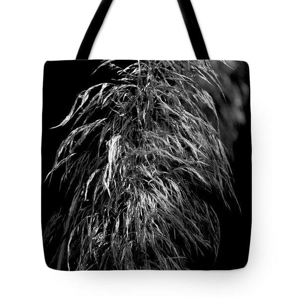 Light Shadows Tote Bag