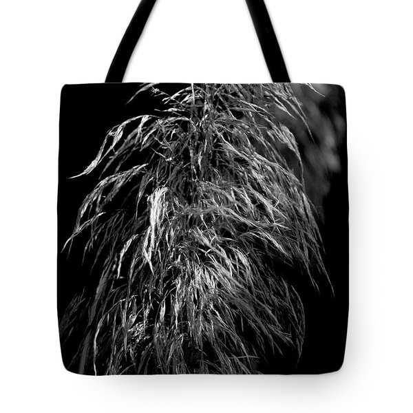Light Shadows Tote Bag