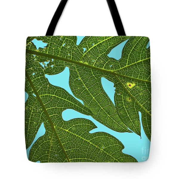 Light Through The Leaves Tote Bag