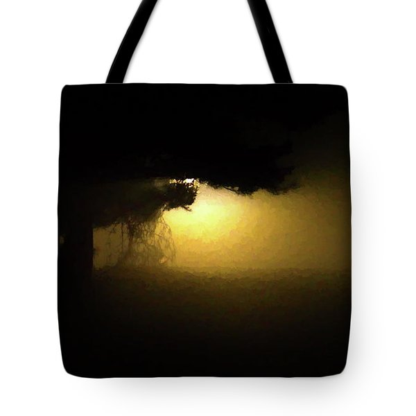Light Through The Tree Tote Bag