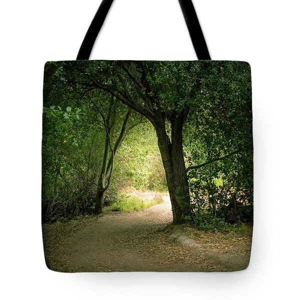 Light Through The Tree Tunnel Tote Bag
