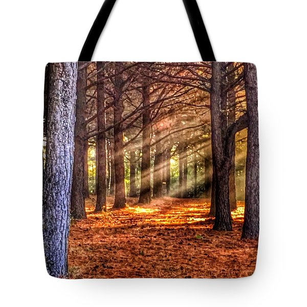 Light Thru The Trees Tote Bag by Sumoflam Photography
