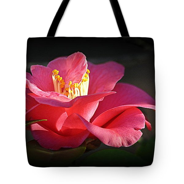 Tote Bag featuring the photograph Lighted Camellia by AJ Schibig