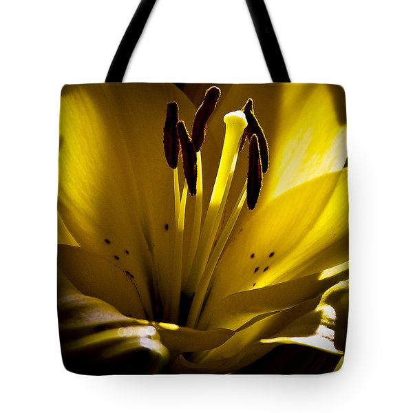 Lighted Lily Tote Bag by David Patterson