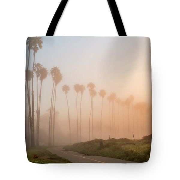 Lighter Longer Tote Bag by Sean Foster