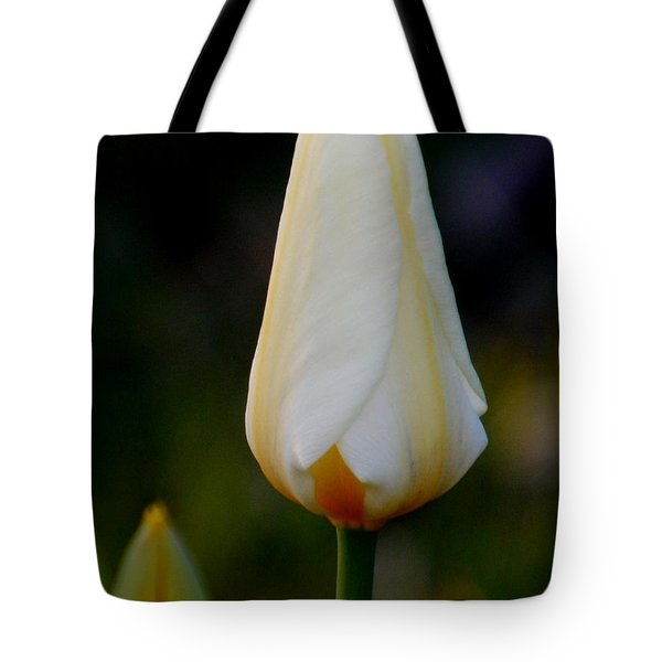 Lighter Shade Of Pale Tote Bag