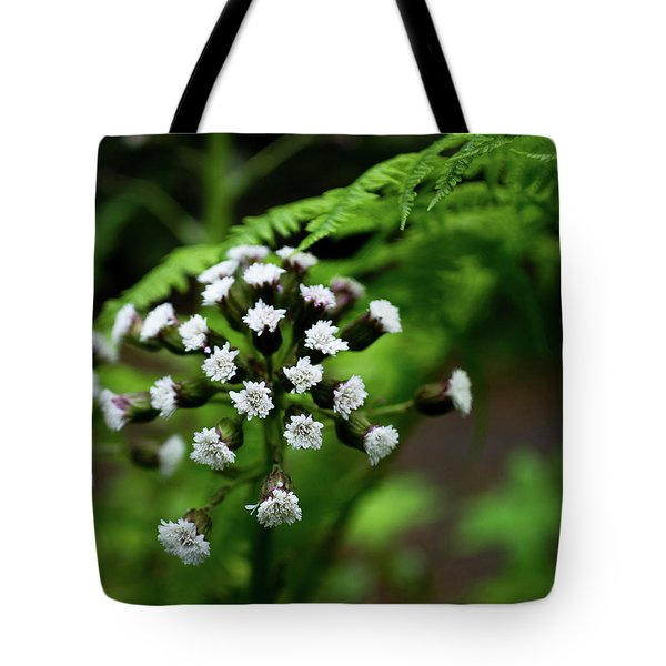 Tote Bag featuring the photograph Lights Amid The Green by Erin Kohlenberg