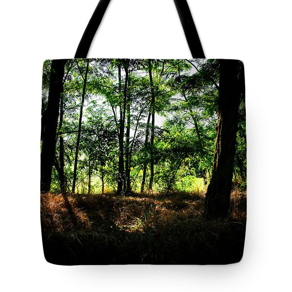 Lights From Another World Tote Bag