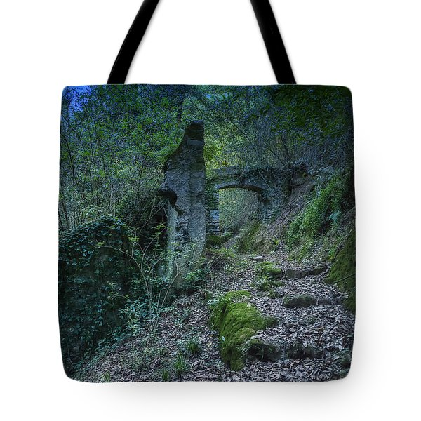 Tote Bag featuring the photograph Ligurian Jungle Covering Up Old Mill Valley Entrance Arch Ruins by Enrico Pelos