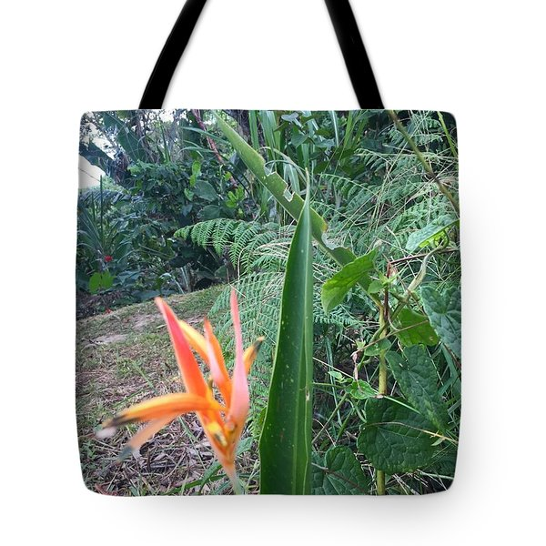 Tote Bag featuring the photograph Like A Firework by Cindy Charles Ouellette