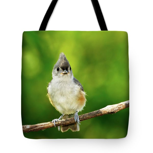 Liking My Style Tote Bag by Betty LaRue