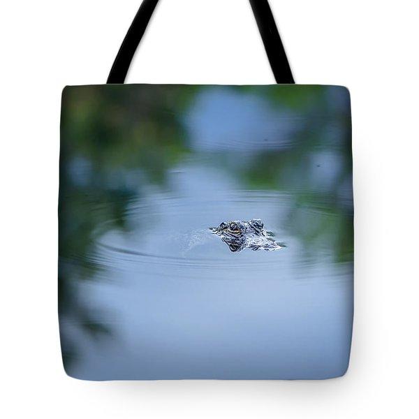 Lil Guy Tote Bag