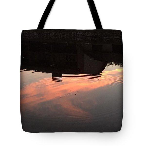 Li'l Ripples In A Florida Lake Tote Bag
