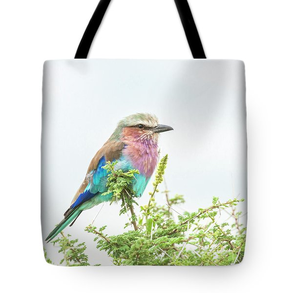 Lilac Breasted Roller. Tote Bag