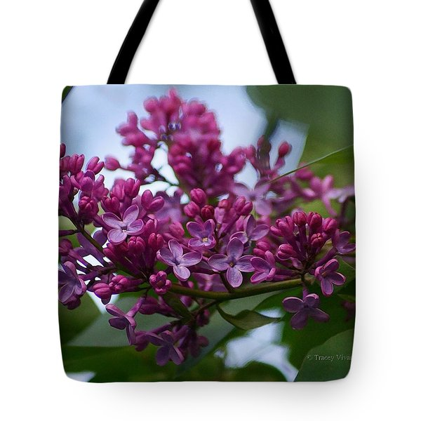 Lilac Buds Tote Bag